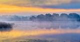 Foggy Otter Creek At Sunrise P1250852