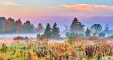 Ground Fog At Sunrise P1250981