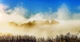 Distant Fog P1260197-203