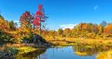Autumnscape DSCN15981-3