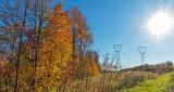 Autumnscape DSCN16441.4
