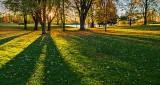 Sunrise Shadows DSCN16458-60