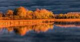 Otter Creek At Sunrise DSCN16938-40