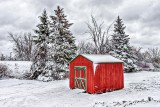 Red Shed DSCN17529-31