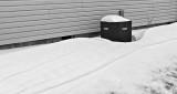 Mid-April Snow P1300329-31