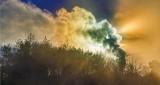 Sun In Steam Plume 37742