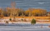 Spring Landscape DSCN20974-6