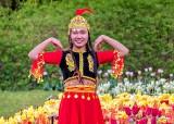 Asian Flower DSCN22939