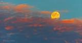 Moon Setting Into Sunrise Cloud Bank DSCN24132-3