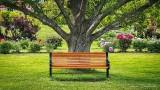 Garden Bench DSCN25347-9