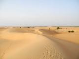 désert de Lompoul, Sénégal