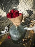 dumpster roses