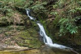 waterfall on Cane Creek 5