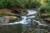 waterfall on Davidson River 1
