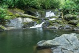 waterfall on Davidson River 2