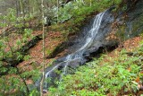 waterfall on tributary of Davidson River 1