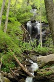 Twin Falls - Pisgah National Forest 3