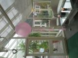 30_inch_wedding_balloon_with_tassels