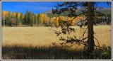Sunny Teton afternoon