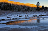 A gallery of scenes and wildlife from the High Country.