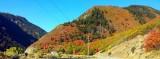 Ogden Valley Images