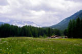 Early Summer in Tyrol