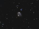 NGC 2936, NGC 2937 & UGC 05130 (Arp 142)