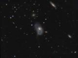 NGC 3921 (Arp 224)