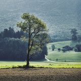 Landschaft.f_170803_0060.jpg