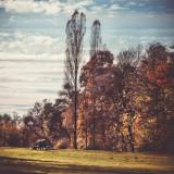Landschaft.f_171025_2358.jpg