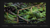 Pukekura Park - New Plymouth