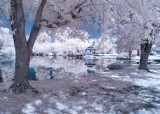 Infrared Photos - Gallery