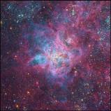 The Tarantula nebula - c close look