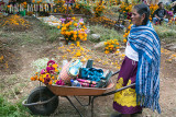 Día de los Muertos in Pátzcuaro and the Surrounding Areas 2017
