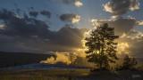 170711-9_OldFaithful_tree_sunset_5554m.jpg