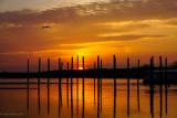 stoneybrook sunset 4 2017.jpg