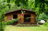 Autour de notre cabane :: Around our cabin