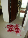 April fool!  Rahil laid a red mess to tramp through.