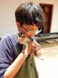 Found a kitten!
