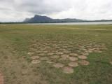 Mystery circles at Lake Kandalama