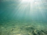 Underwater in the Maldives