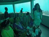 In the underwater restaurant