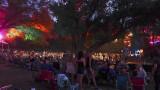Live Oak Music Festival 2017
