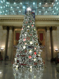 Christmas Tree in the Great Hall