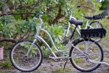 Bike too