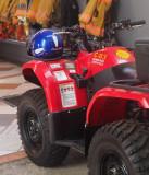 P3180354 ATV