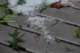 DSC02339 Today's hail