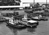Port Limon