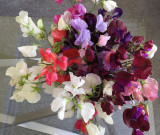 A bunch of sweet peas.