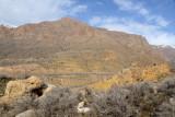 Armenia highway M10